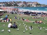 Christmas at Bondi Beach 2006