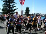 City to Surf 2013